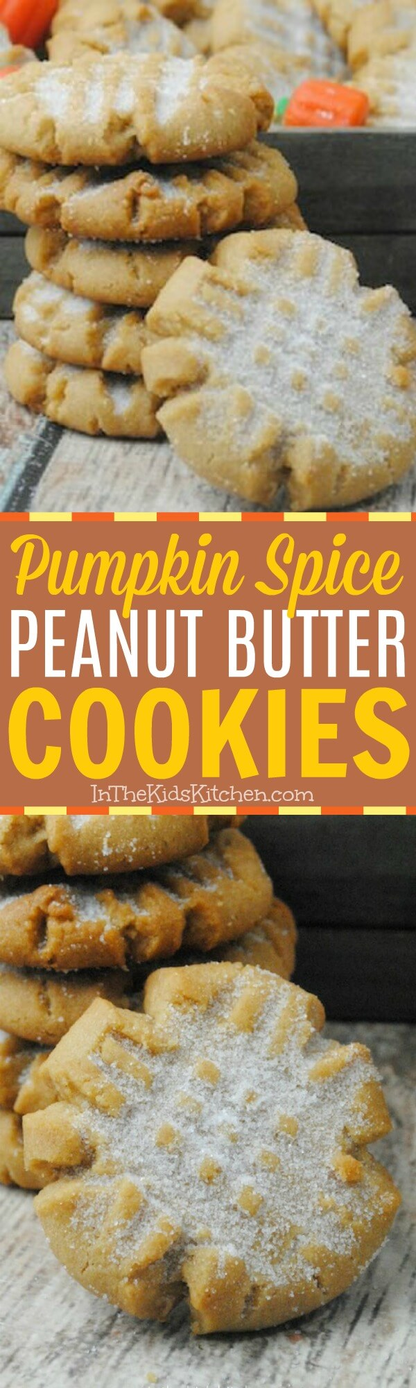 You'll want to savor every bite of these Pumpkin Spice Peanut Butter Cookies! An unexpectedly AMAZING flavor combination and the perfect fall dessert.