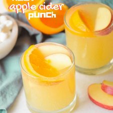 Fizzy Crockpot Apple Cider for Kids